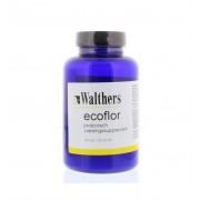 Walthers Ecoflor 100 gram