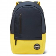 22L Nylon Colorblock Backpack