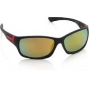 Joe Black Rectangular Sunglasses(Multicolor)