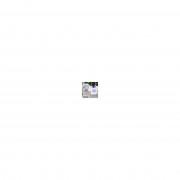 smartphoto T-shirt dam fuchsia XS