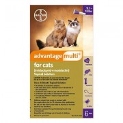 Advantage Multi (Advocate) Cats Over 10lbs (Purple) 6 Doses
