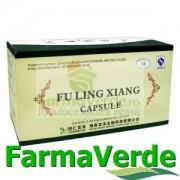 Fuling Xian (Yimudan) 180 capsule BBM Medical