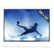 "FrontStage Pantalla de proyector con perfecta calidad HDTV 343cm 240x240cm 1:1 (PS-PSEB-135"")"