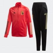 Adidas Спортивный костюм сборной Бельгии adidas Performance Красный 140