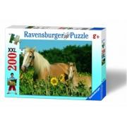Puzzle cai, 200 piese Ravensburger