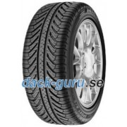 Michelin Pilot Sport A/S Plus ( 295/35 R20 105V XL N0 )