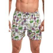 Classic 171 férfi alsónadrág, zöldségmintával M