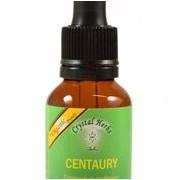 Centaury (Tintaura)