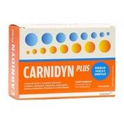 Biofutura Pharma Spa Carnidyn Plus Integratore Alimentare 20 Bustine Da 5g