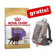 12 kg Royal Canin Breed + rucsac Royal Canin gratis! - German Shepherd (11 kg)