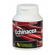 Echinacea, 100 tobolek