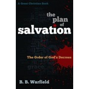 The Plan of Salvation: The order of God's decrees, Paperback/Michael Rotolo