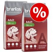 2х14кг Adult Briantos суха храна за кучета - сьомга и ориз