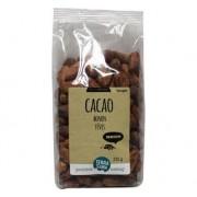 Terrasana RAW cacao bonen - 225g