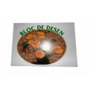 Bloc Desen 16 File Format A3 100G Coperta Policromie cu Design Atractiv - Bloc Desen A3 Alb Brandpaper
