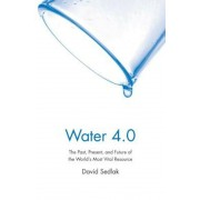 Water 4.0: The Past, Present, and Future of the World's Most Vital Resource, Paperback