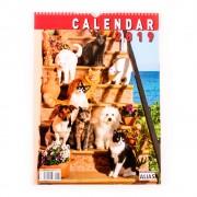 Calendar de perete Caini si pisici 2019 - format mare, spiralat, 6+1 file