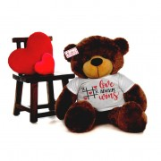 Huge 5 Feet Personalized Love Teddy Bear - Choose From 7 Colors