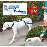 Lesa caine Instant trainer