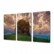 Tablou Canvas Premium Peisaj Multicolor Peisaj cu copac urias Decoratiuni Moderne pentru Casa 3 x 70 x 100 cm