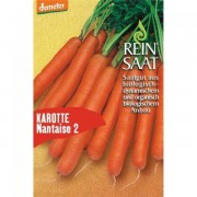 Seminte de morcovi Bio Nataise 2, ReinSaat