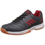adidas Men's Baseliner 2 Dkgrey, Scarle, Dkgrey and Scar Indoor Multisport Court Shoes - 9 UK/India (43.33 EU)
