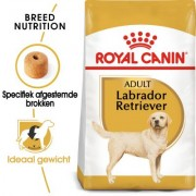 12kg Labrador Retriever Adult Royal Canin Breed Hondenvoer