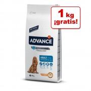 Affinity Advance 12 kg a 15 kg en oferta: ¡1 kg gratis! - Advance Maxi Adult pollo y arroz (13 + 1 kg gratis)