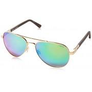 Revo Sunglasses, Gold Frame, Open Road 58mm Lenses, part of the Serilium Collection