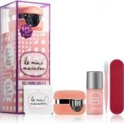 Le Mini Macaron Gel Manicure Kit Rose Creme Cosmetic Set VI. (for Nails) W