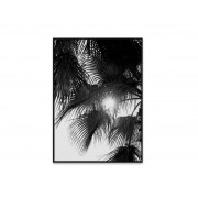 Paper collective Poster PALM TREES Wit