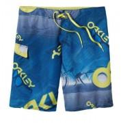 Oakley Polarized 21 Pantalones cortos Azul 30