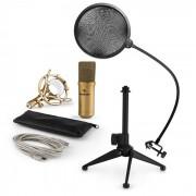 MIC-900G-LED USB Mikrofonset V2 | 3-teiliges Mikrofon-Set mit Tisch-Stativ