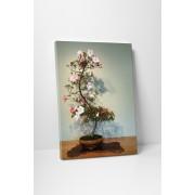 Virágzó bonsai fácska - 35x45 cm - AKCIÓ!