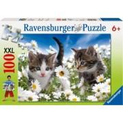 PUZZLE PISICUTE SI MARGARETE 100 PIESE Ravensburger