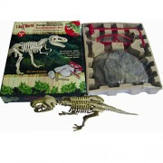 Generic Tyrannosaurus Rex Dinosaur Skeleton Excavation Kit Archaeology Fun Toy Gift