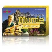Extract de rasina mumie 100% natural-tablete 60tbl DAMAR