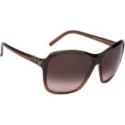 Guess Wayfarer Sunglasses(Brown)