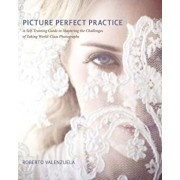 Picture Perfect Practice: A Self-Training Guide to Mastering the Challenges of Taking World-Class Photographs, Paperback/Roberto Valenzuela
