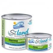Siland diet nucrointestinal gatto salmone/riso 155g