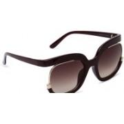 MARC LOUIS Retro Square Sunglasses(Brown)