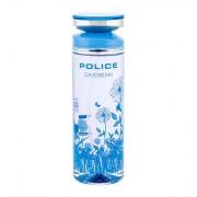 Police Daydream eau de toilette 100 ml per donna