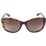 INVU Cat-eye Sunglasses(Brown)