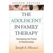 The Adolescent in Family Therapy Second Edition par Micucci & Joseph A. Chestnut Hill College & PA & United States