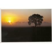 Wschód słońca - widokówka