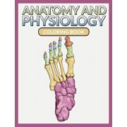 Anatomy and Physiology Coloring Book, Paperback/Speedy Publishing LLC