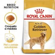 3kg Golden Retriever Adult Royal Canin pienso para perros