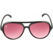Royal County Of Berkshire Polo Club Wayfarer Sunglasses(Pink)