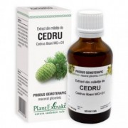 Extract mladite cedru 50ml