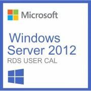 Microsoft Windows Server 2012 Rds/tse User Cal 20 Utilisateurs
